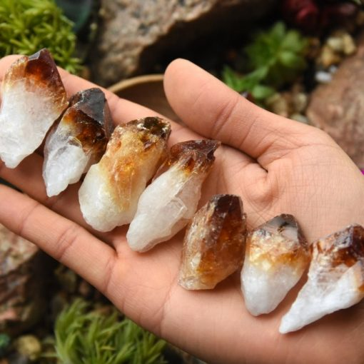 Wholesale Citrine Crystal Points Large