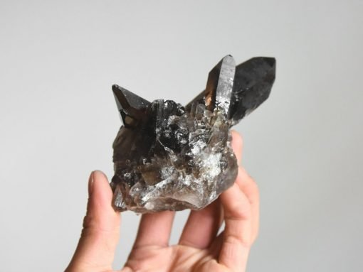 Rare Smoky Quartz Point Crystal Cluster Dark Smoky Quartz Specimen Bulk Crystals Sale
